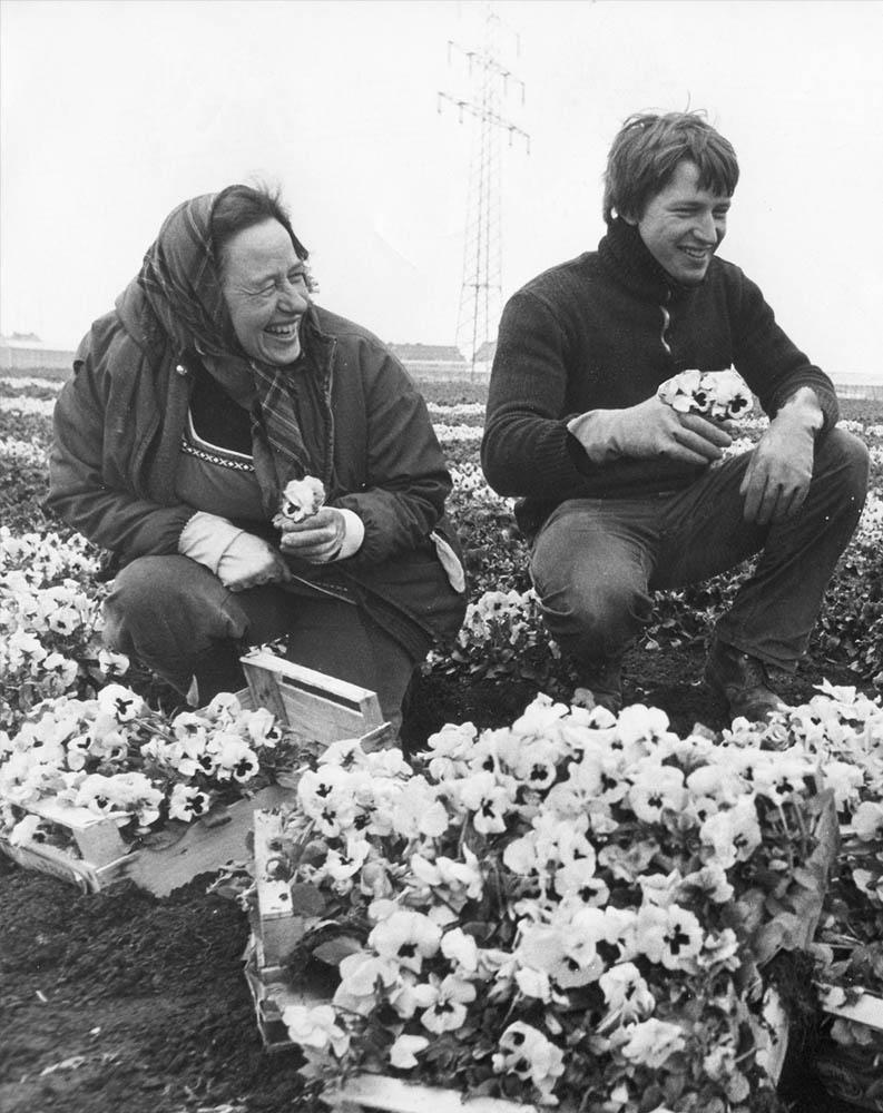 Maria Andree und Sohn Willi auf dem Feld